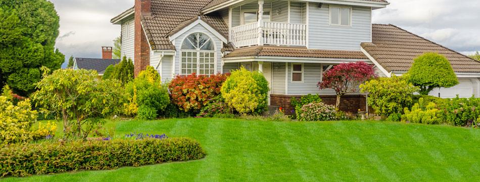 This is Landscape Maintenance Commercial Image