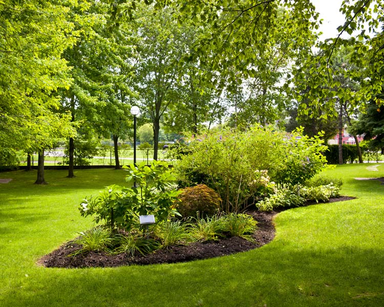 This is Landscape Maintenance Mulch Image