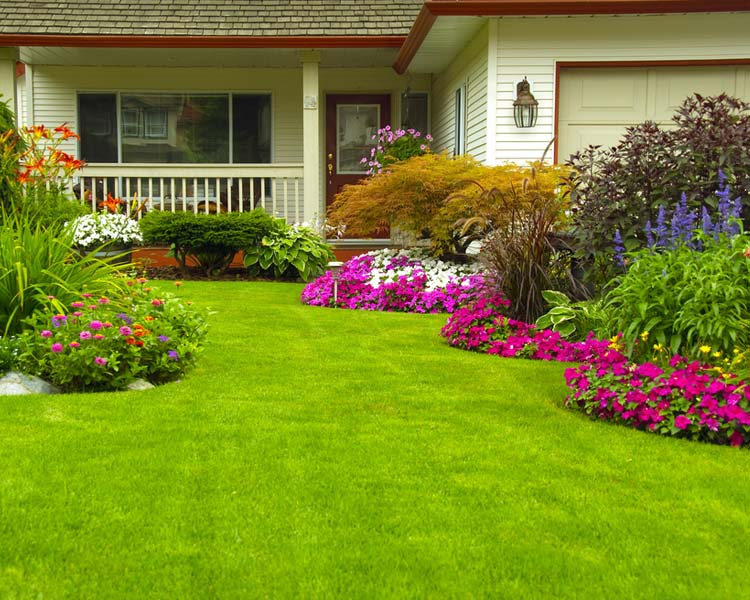 This is Landscape Maintenance Residential Image
